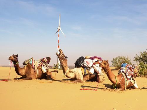 jaisalmer-jr 1- etape 1-dunes (4)
