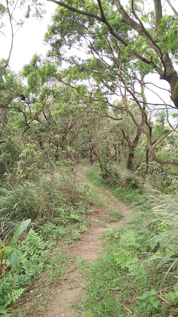 2.山徑自然友善