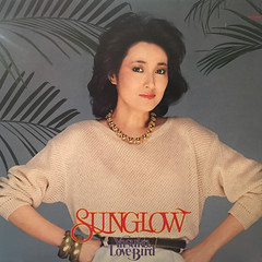 YASUKO AGAWA:SUNGLOW(JACKET A)