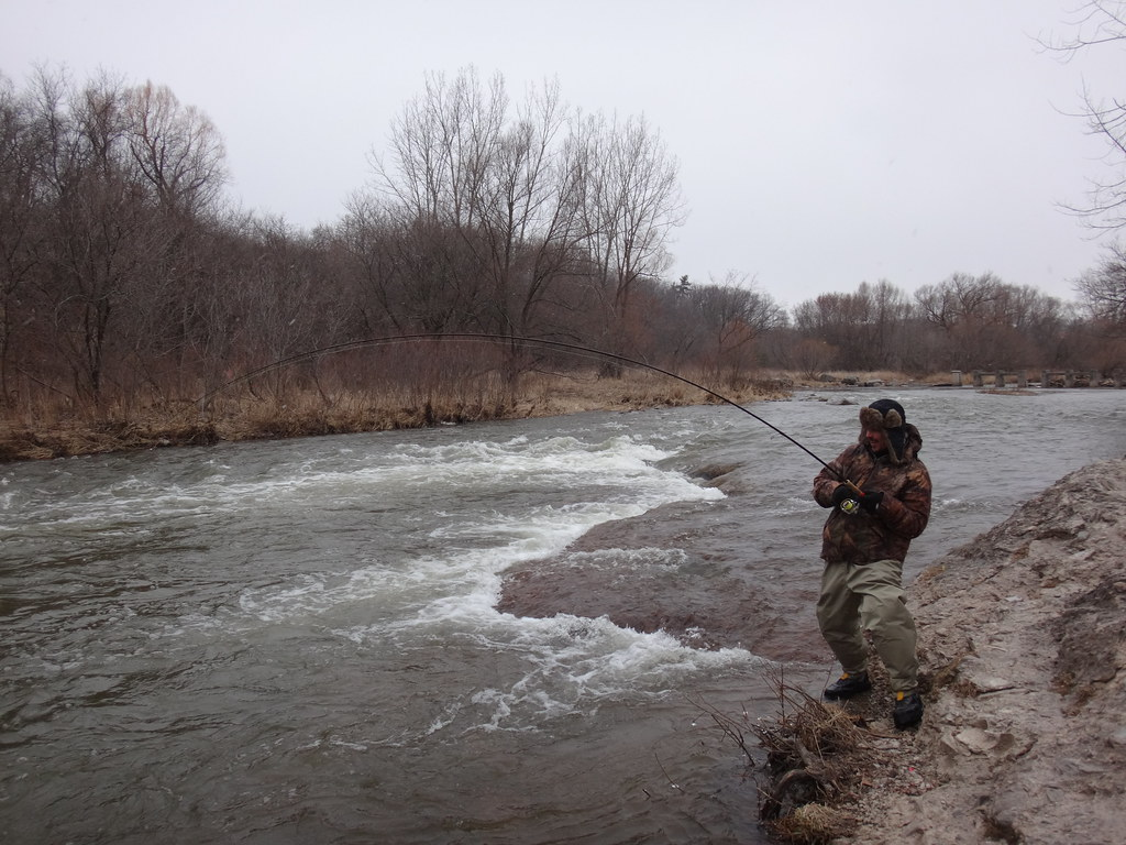 ontario fly fishing guide