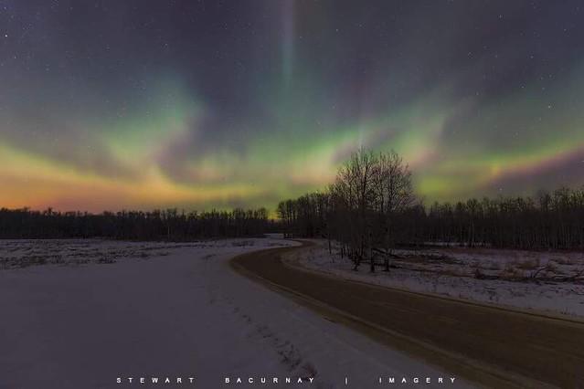 Northern Lights Over Bison Loop