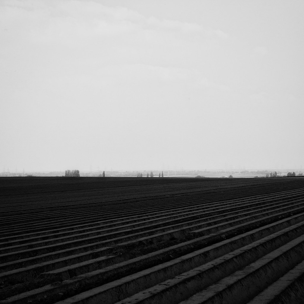 pretty nice b2075 92104 lines | Andrea Schuh | Flickr