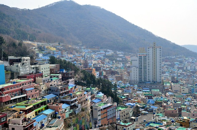 Visiting Gamcheon Culture Village Busan