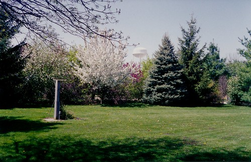 IMG_00475_Spring_in_Backyard_Harlan