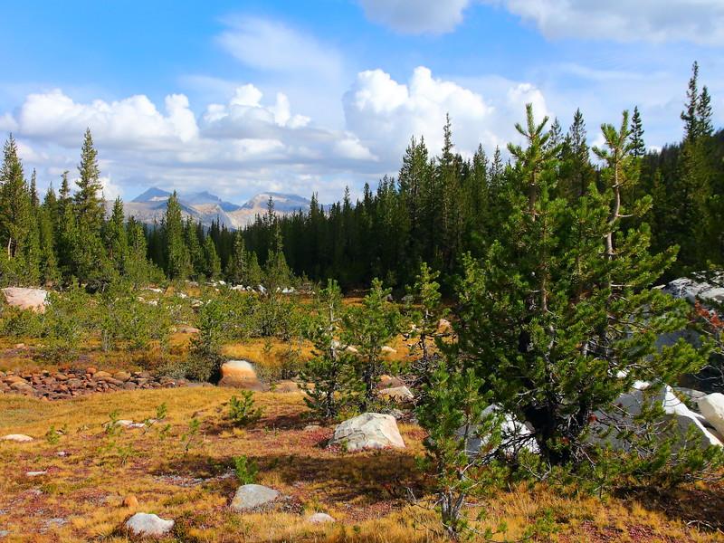 IMG_1655 Elizabeth Lake Trail