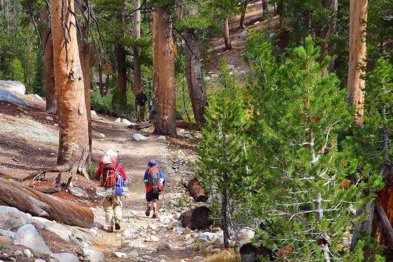 IMG_1769 Elizabeth Lake Trail