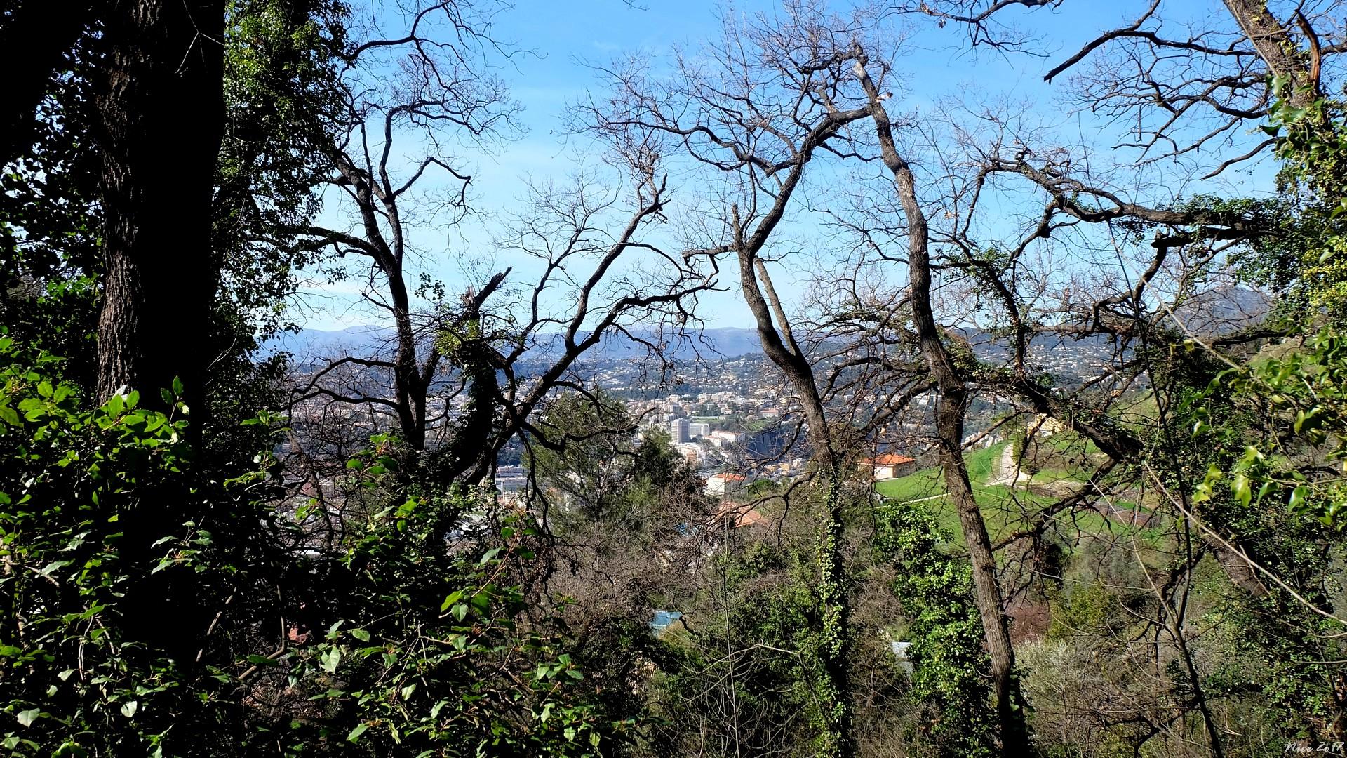 Vinegard Park, Nice, France