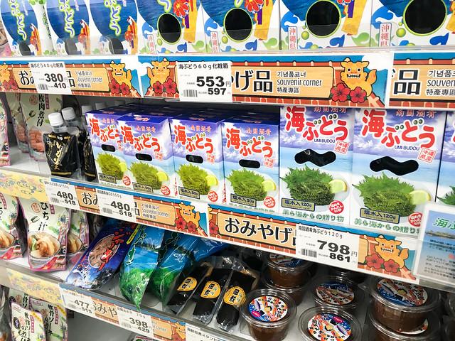 博多→那覇→石垣→波照間の旅-74.jpg