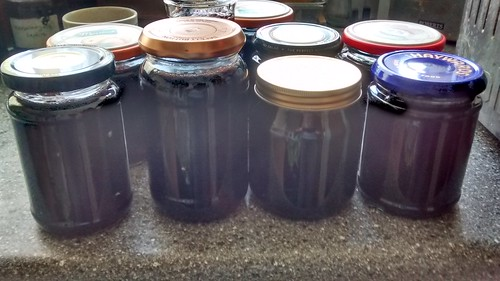 bramble jelly Apr 17
