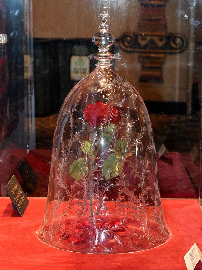the gallery for gt beauty and the beast enchanted rose prop