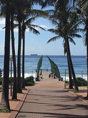 2017-03-11 Durban whale and sea 37