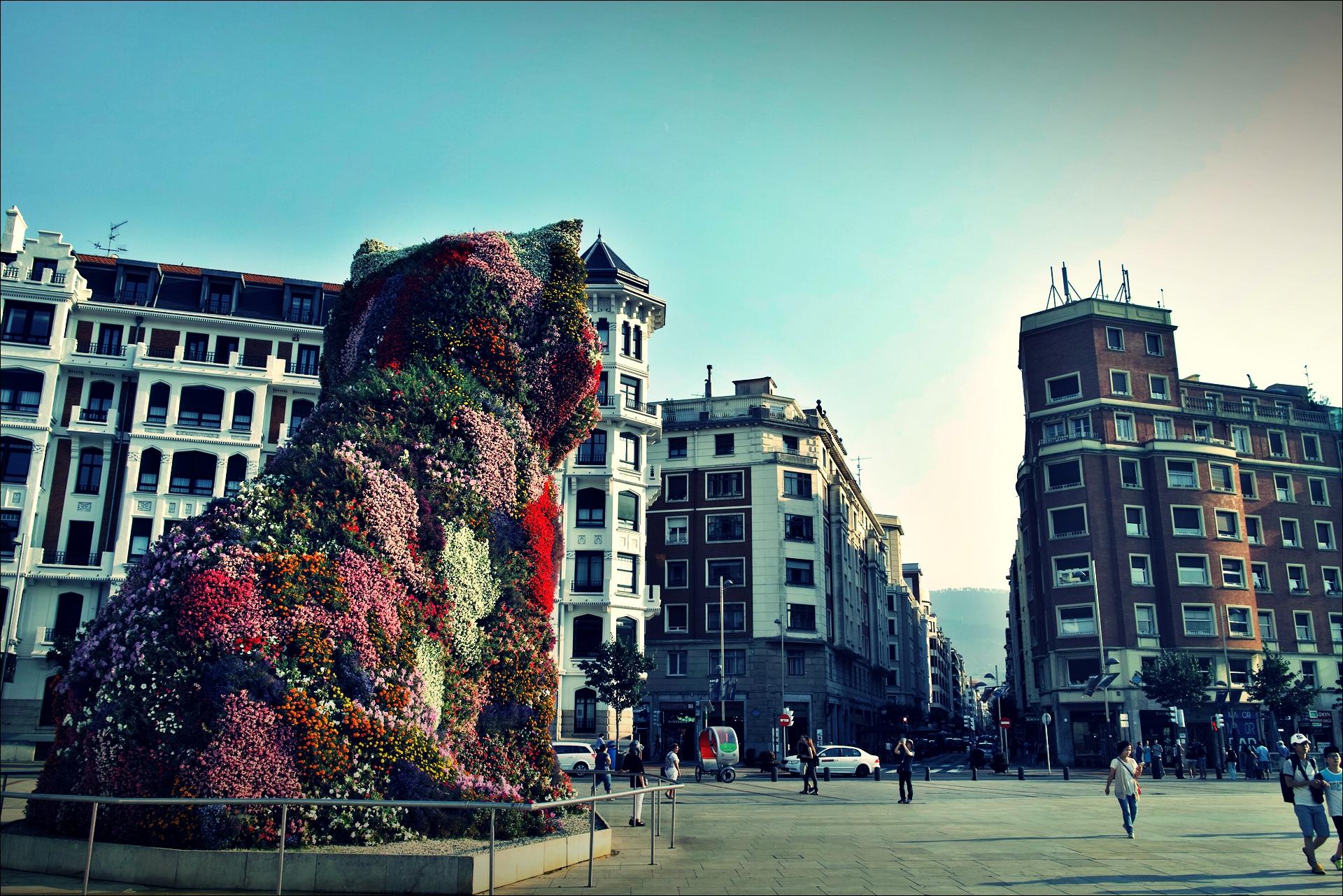 꽃개-'카미노 데 산티아고 북쪽길. 빌바오. (Camino del Norte - Bilbao)'
