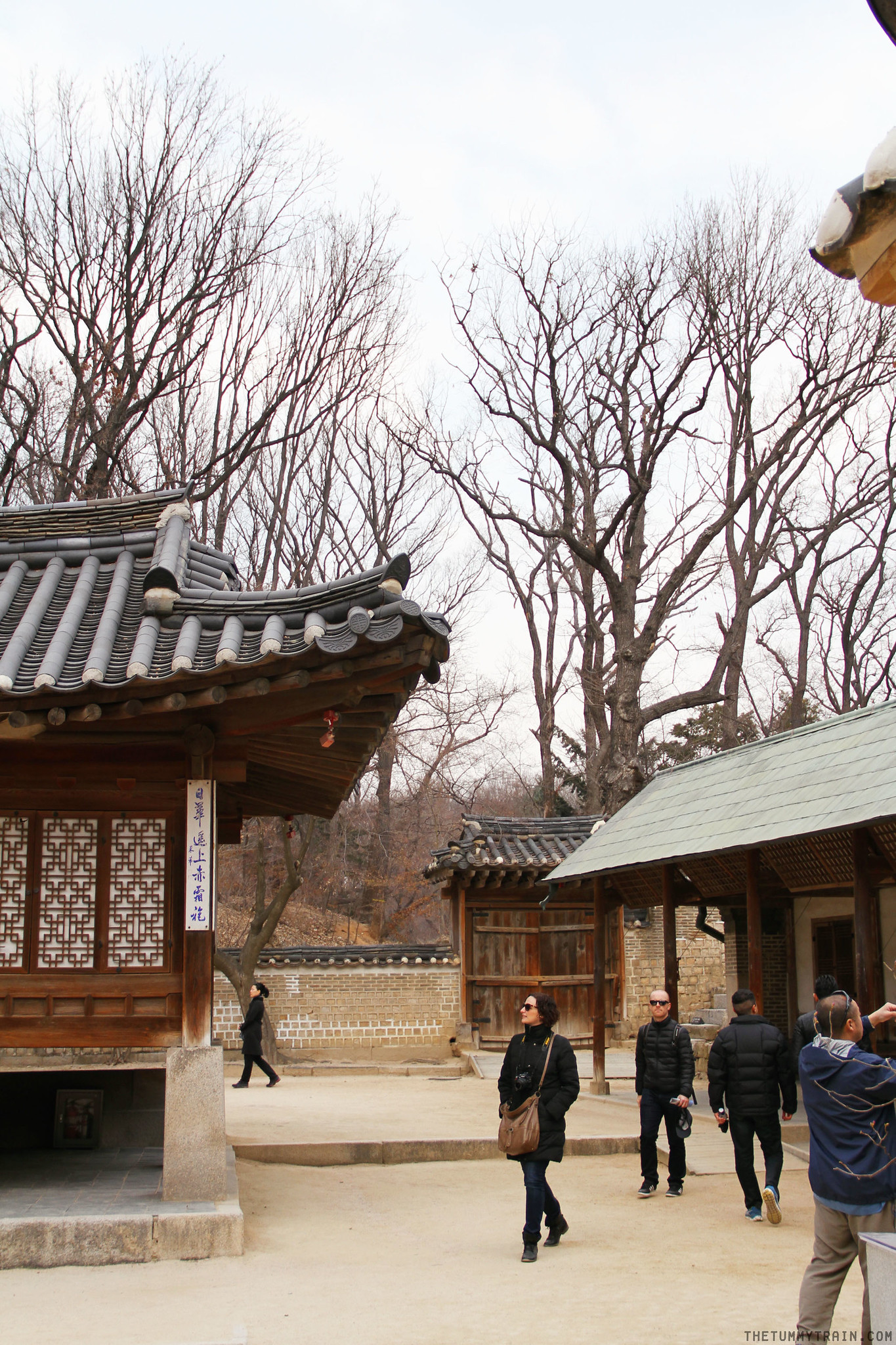 32686932104 60339e1fbb k - Seoul-ful Spring 2016: Greeting the first blooms at Changdeokgung Palace