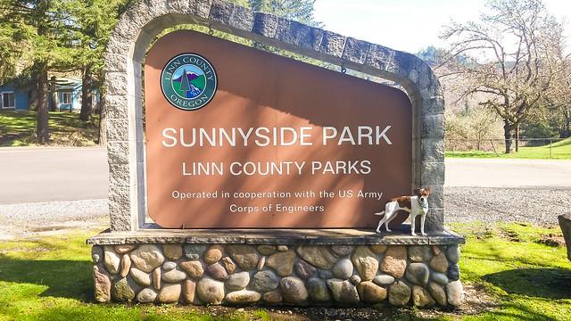 Sunnyside Park-141331