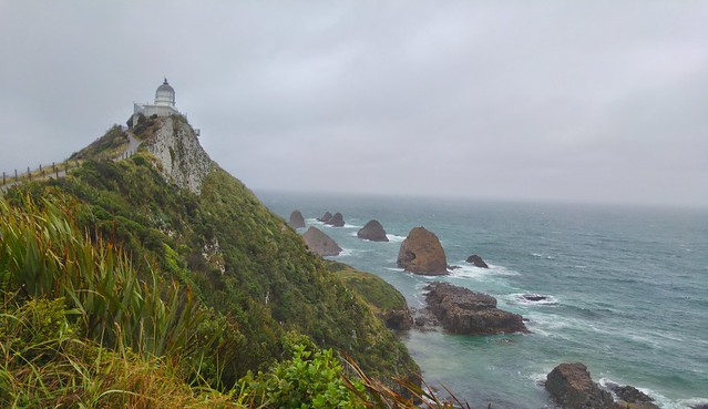 Today's achievement: not being blown off the Nugget Point Lighthouse track