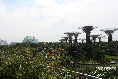 160909b MBS Marina Bay Sands to Gardens by the Bay _35