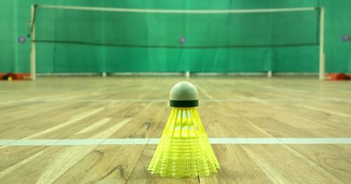 The sport of badminton