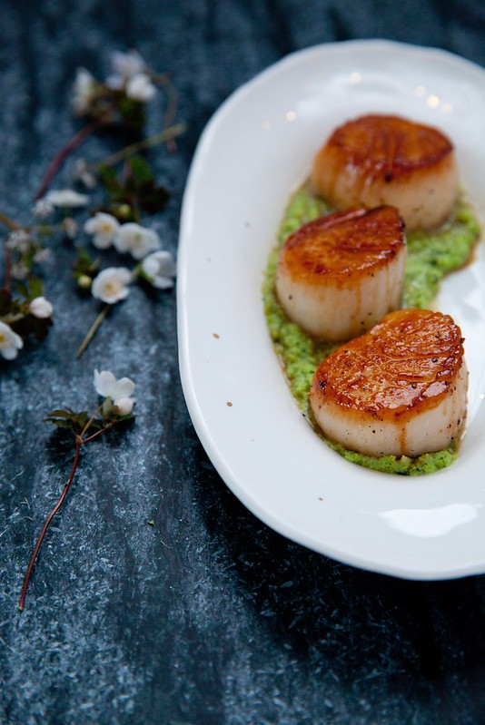 Seared Scallops with Herbed Spring Pea Pesto