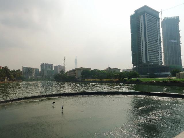 335-Colombo