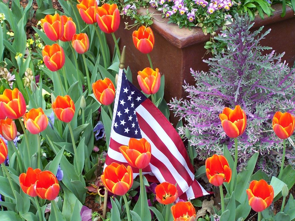 Dallas Botanical Garden Mikes4354 Flickr