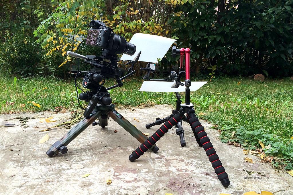 Below 1x Magnification Shooting Scene In The Backyard