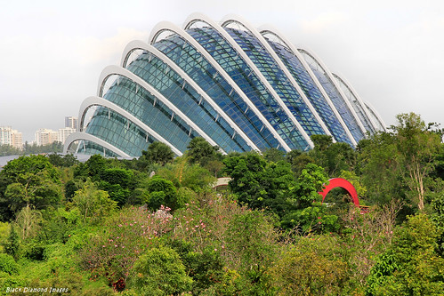 Cloud Forest Dome Gardens By The Bay From Near Marina Bay