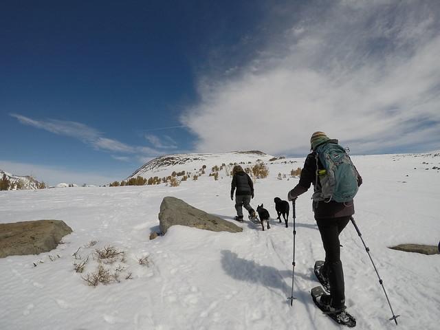 Snowshoeing Carson Pass to Winnemucca Lake