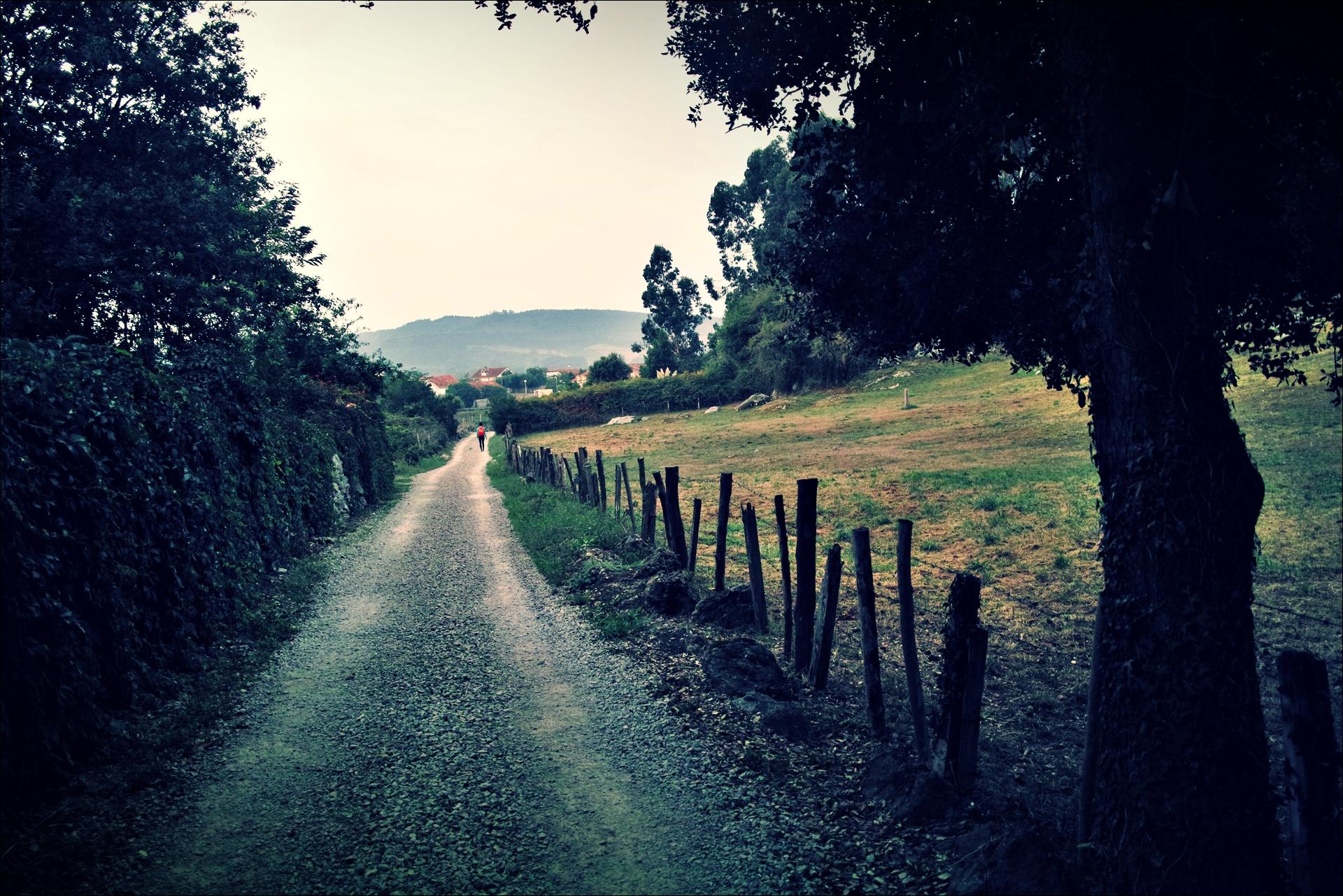 길-'카미노 데 산티아고 북쪽길. 노하에서 궤메스. (Camino del Norte - Noja to Güemes)'