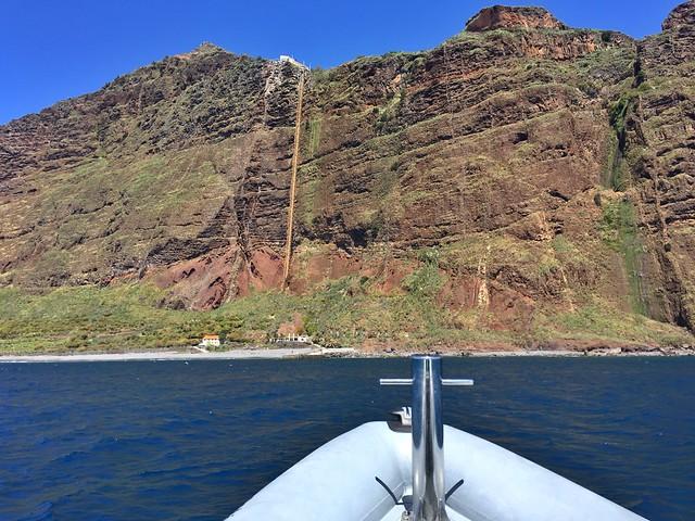 En barco en Madeira buscando ballenas y delfines