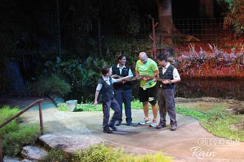 160912f Singapore Night Safari _095