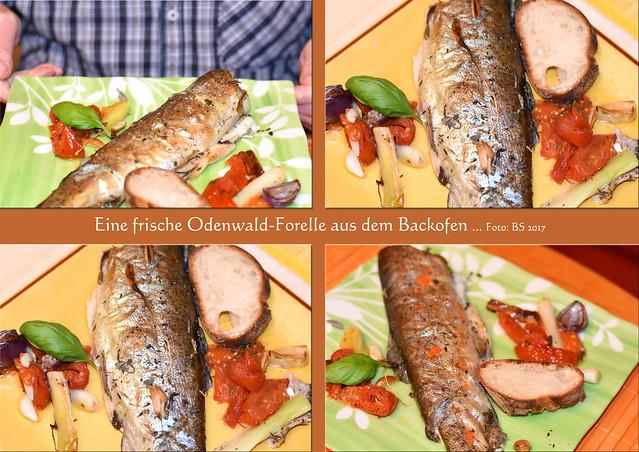 Odenwald-Forelle, ein frisches Produkt aus der Region ... Backofen-Forelle mit Zwiebel-Knoblauch-Tomaten-Gemüse und Knusper-Baguette ... Fotos und Collagen: Brigitte Stolle, Mannheim, April 2017