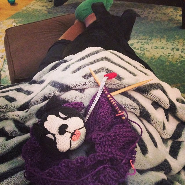96/100 #100happydaysofDWJ I've got a doggy napping on my lap while I knit and a new doggy tape measure for my knitting kit! #doubledog #knitting #dwjknits #cherstagrams