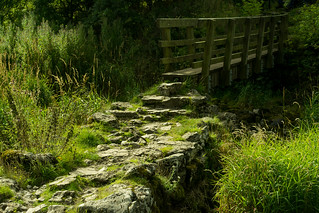 20150906-10_Footbridge Junction of Cales Dale into Lathkill Dale