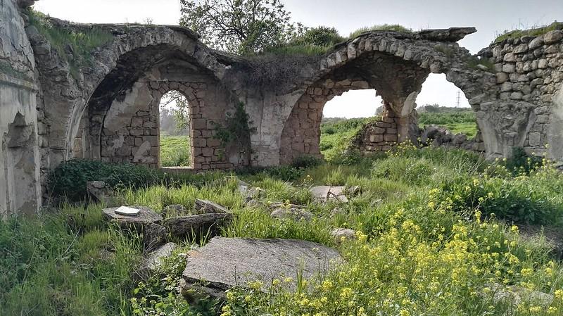 Tel-Ashdod-2-1434