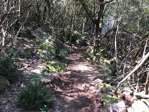 Le sentier de Petra Stretta après le travail