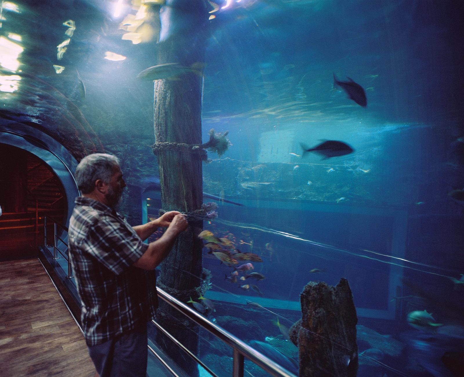 Melbourne Aquarium vi