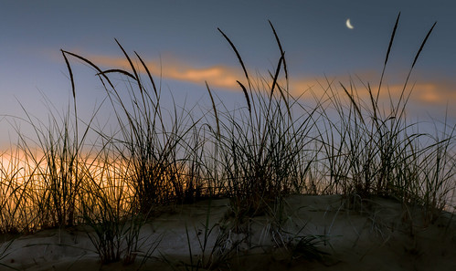 Evening in the dunes | by Bernd Thaller