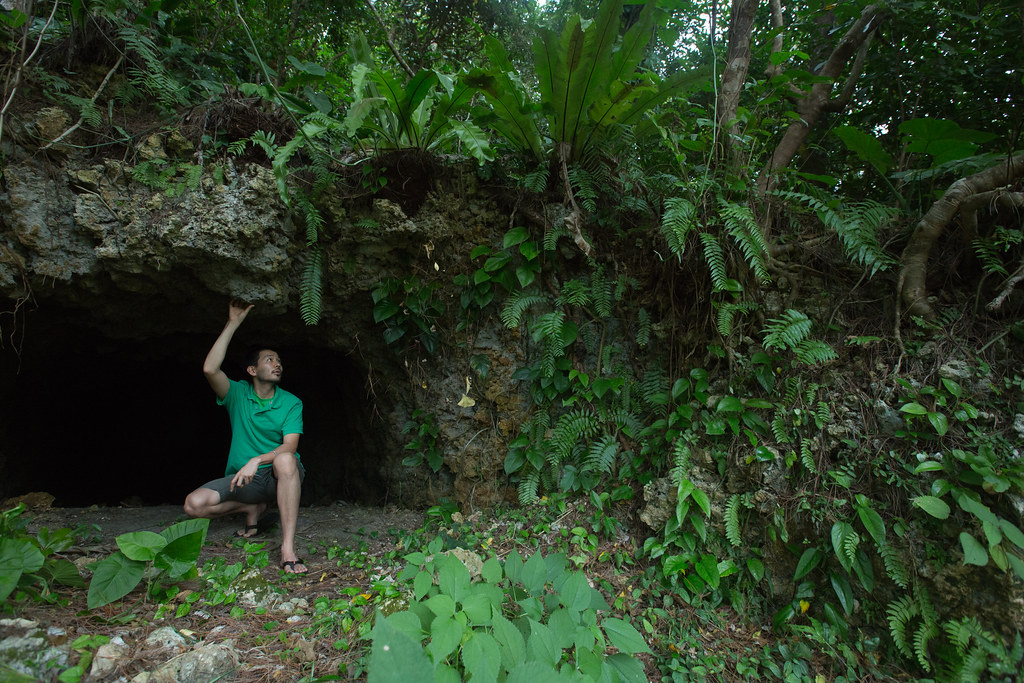 Man Cave Urban Jungle : A jungle man in cave miyako jima