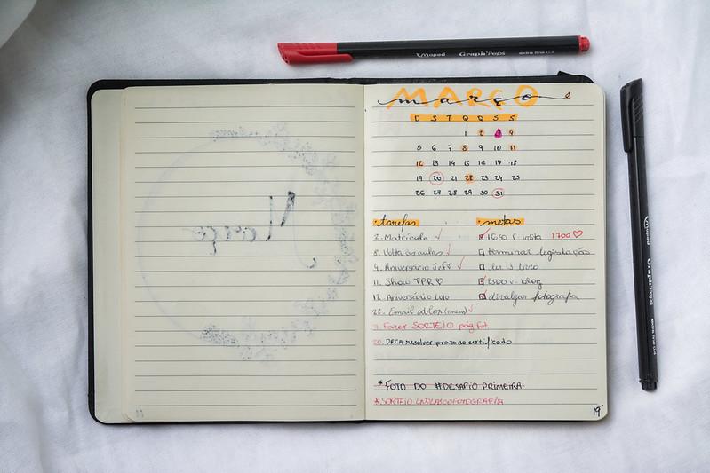 Bullet Journal - Monthly Log