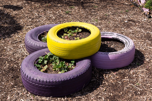 Colorful tire planters