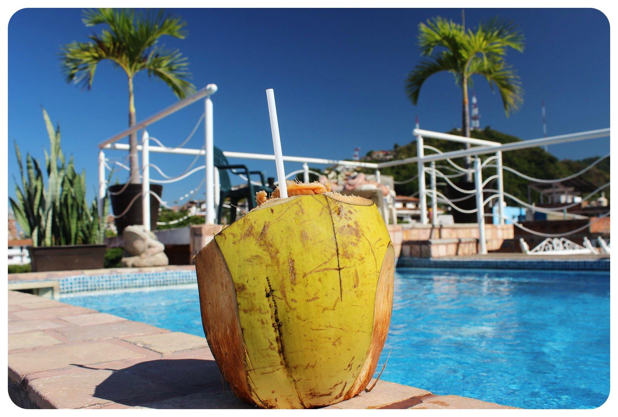 puerto vallarta coconut