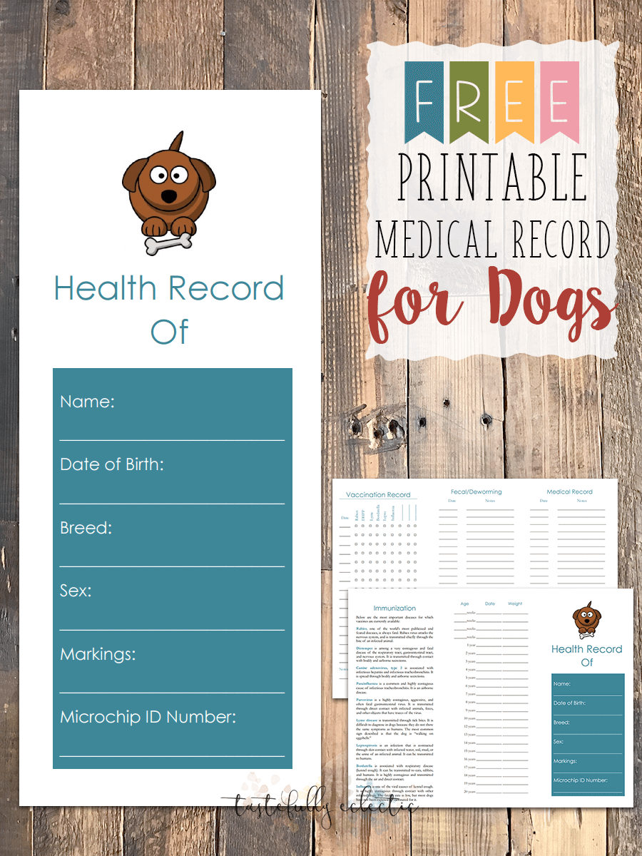 image about Printable Dog Vaccination Record titled No cost Printable Health-related Heritage for Pet dogs - Tastefully Eclectic