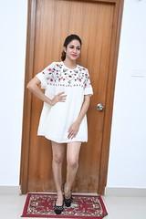 Lavanya Tripathi Latest Stills