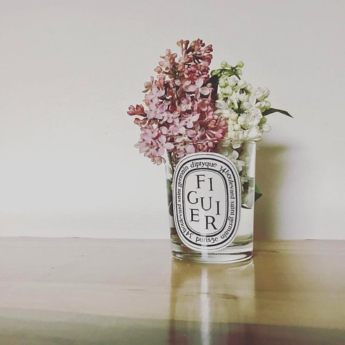 lilacs from our yard #diptyque #springhassprung