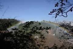 Iguazu Falls National Park in Argentina   - 183