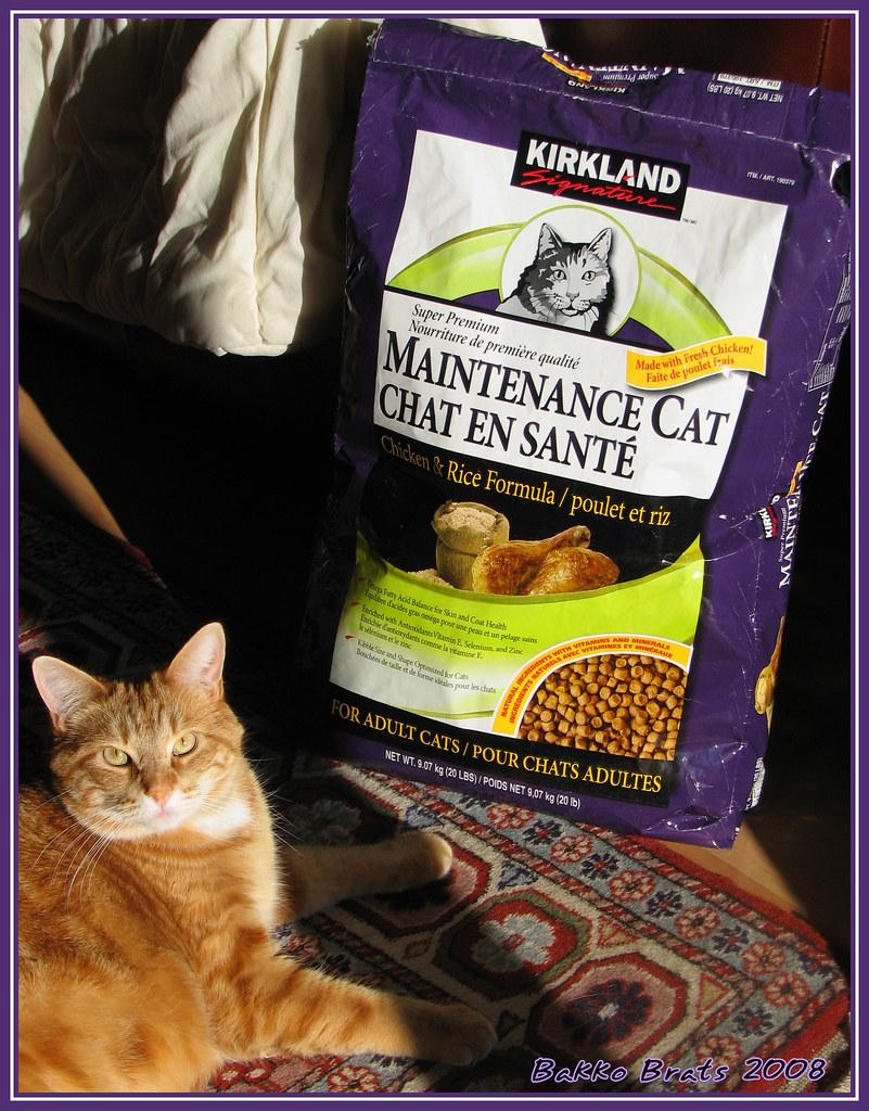 Deli Cat Cat Food Recall