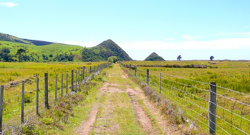 the pyramids, otago peninsula | by hopemeng