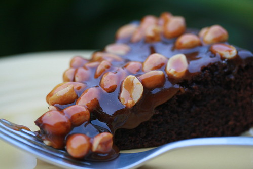 Caramel-Peanut-Topped Brownie Cake | by Food Librarian
