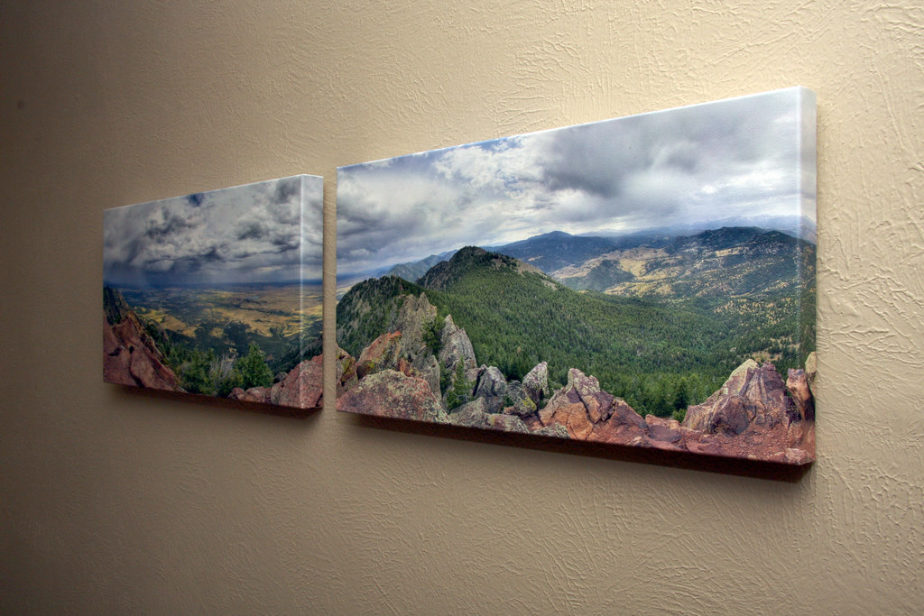 Why you Should Invest in Canvas Prints