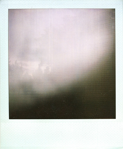 polaroid, window screen (free texture layer) | by bunchadogs & susan [off for a bit]